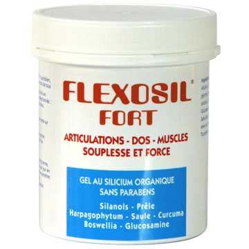 GEL FLEXOSIL fort
